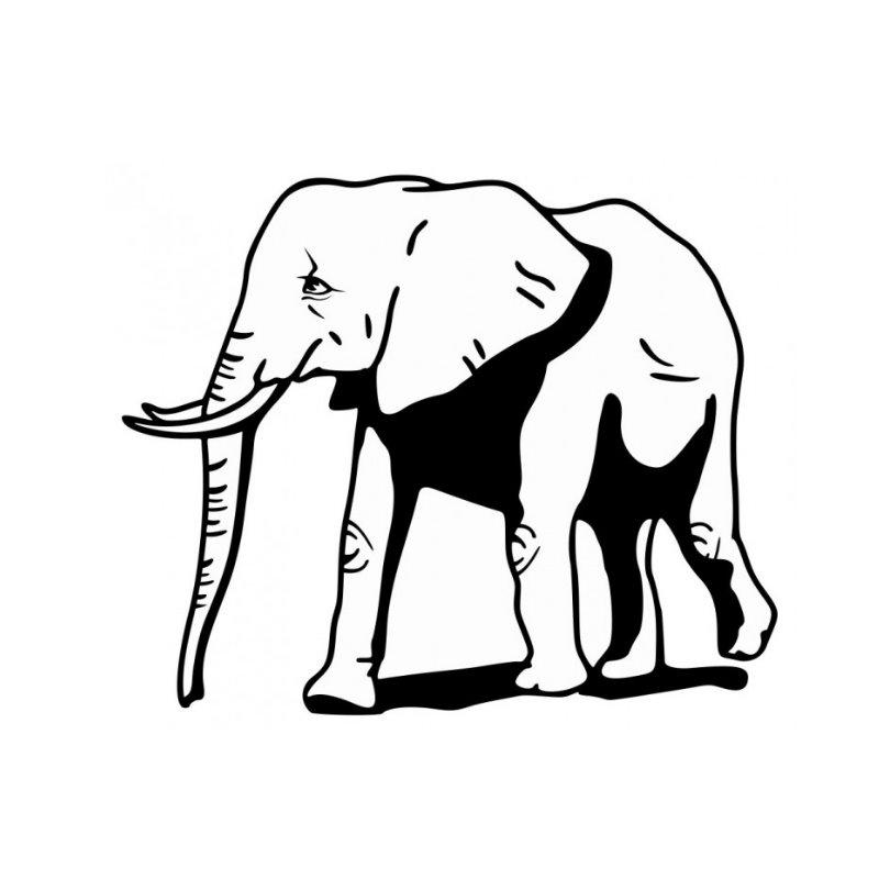 Afrikanische Elefant Tattoos Az Ausmalbilder