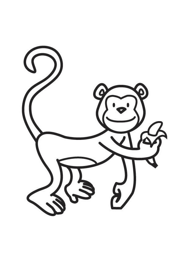 Malvorlage Affen - AZ Ausmalbilder