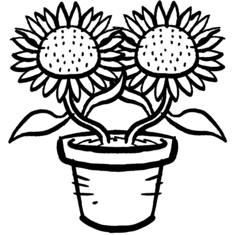 Ausmalbild Sonnenblume Az Ausmalbilder