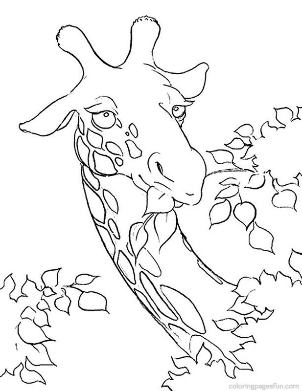 Giraffe Coloring Pages - Page 4 of 4 - Free Printable Coloring