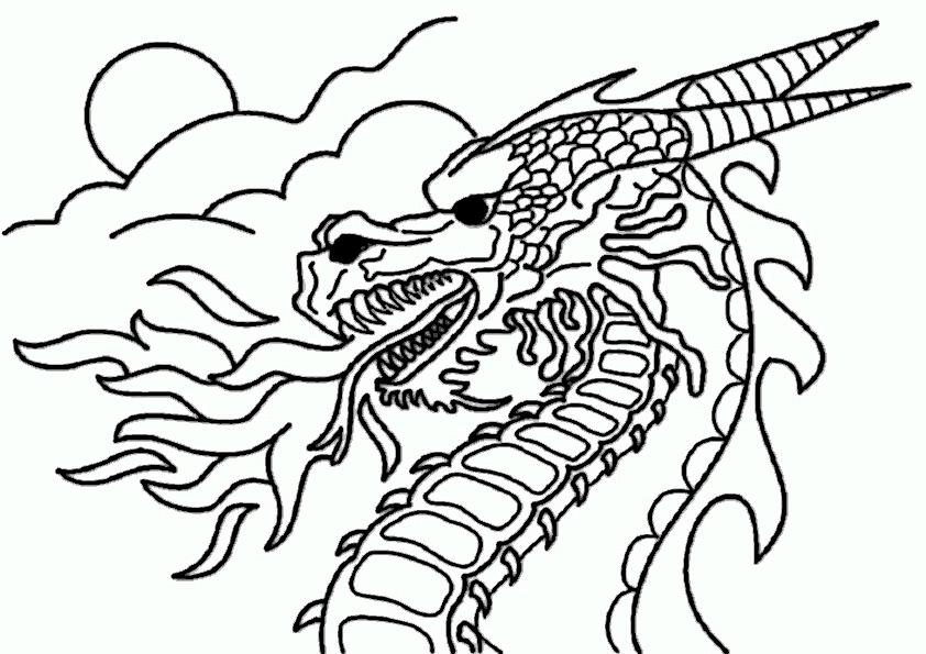 Bilder Drachen - AZ Ausmalbilder