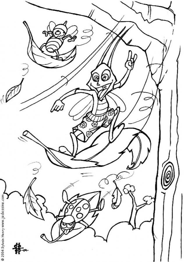 Ausmalbilder Insekten - AZ Ausmalbilder