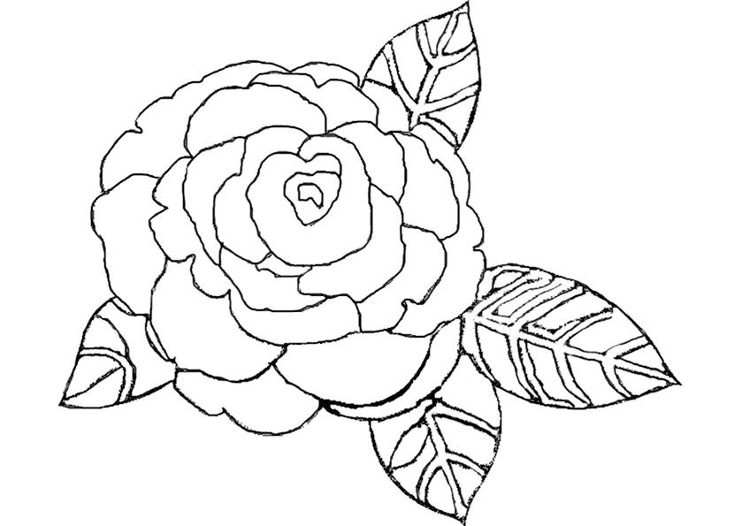 Kostenlose Malvorlagen Blumen Az Ausmalbilder