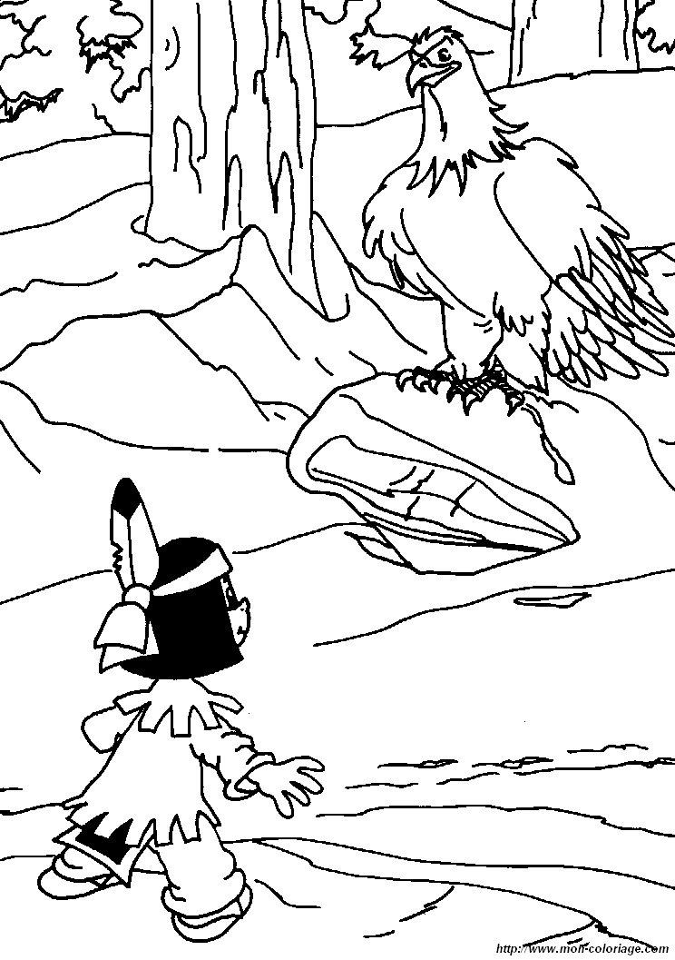 Ausmalbild Adler Az Ausmalbilder