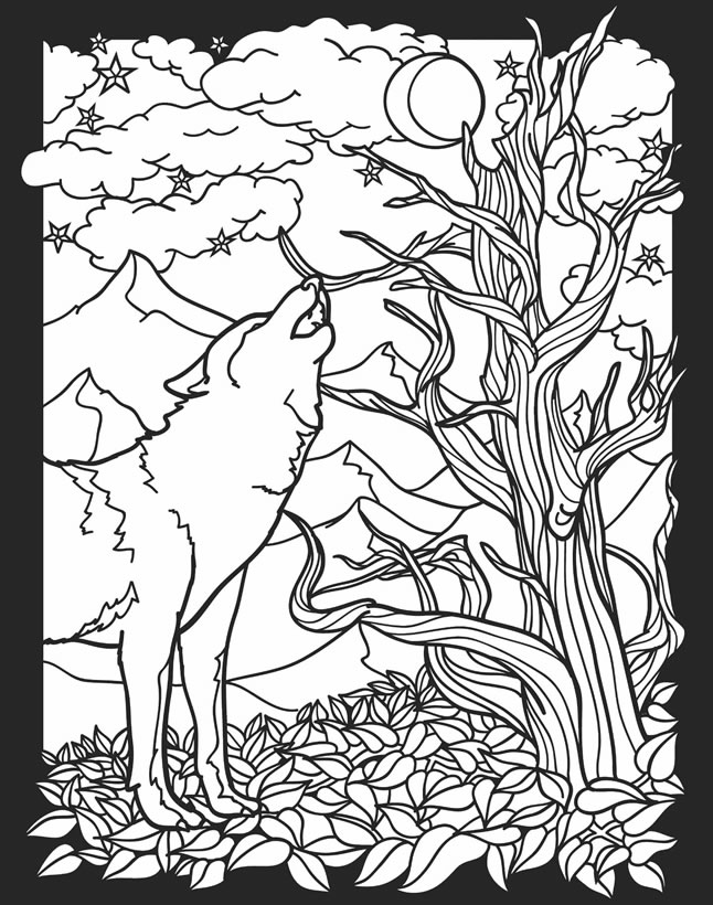Childhood Education: Nocturnal Animals Coloring Pages Free