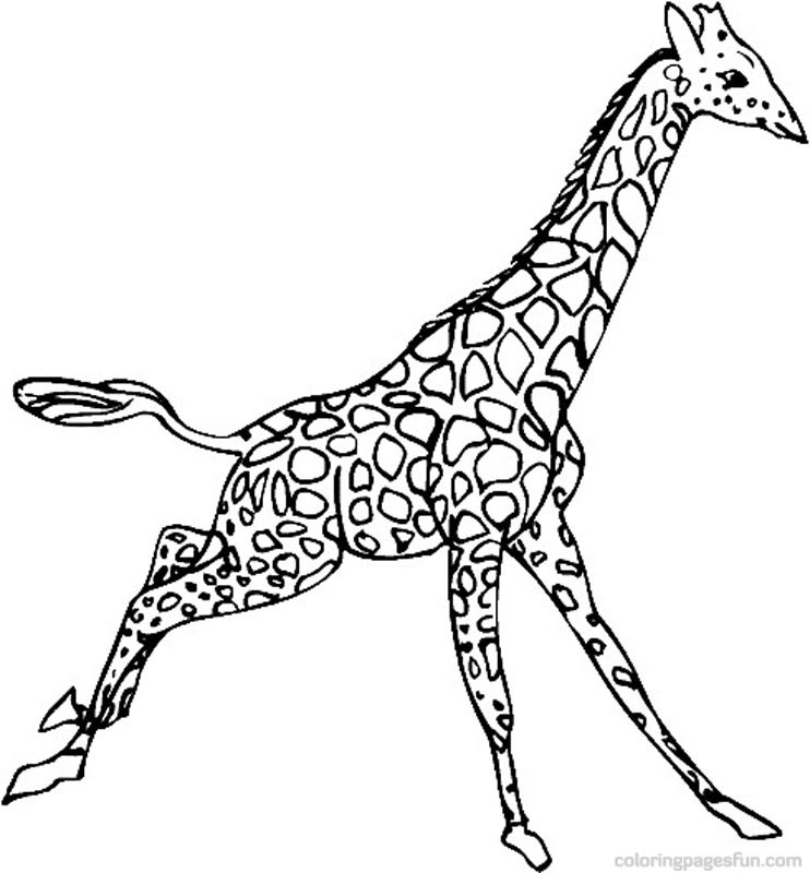 Giraffe Coloring Pages - Free Printable Coloring Pages