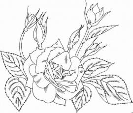 Blumen Ausmalbilder Az Ausmalbilder